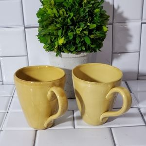 NWOT Lot of 2 Z GALLERIE Mugs Made in Italy Color